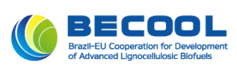 BECOOL PROJECT Logo