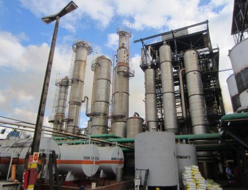 BioValue – The Twin Project in Brazil