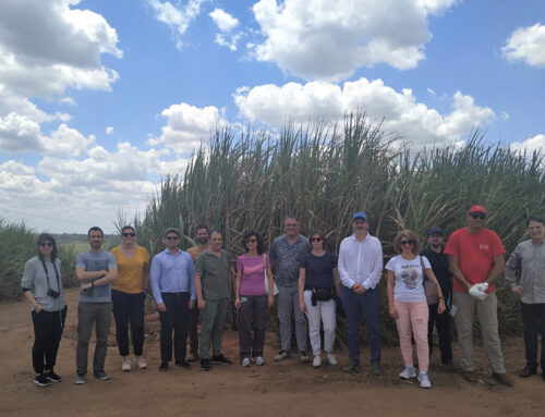 Rainwater-irrigated sugarcane, sugar, ethanol and energy from biomass: a visit to Petribu plant by BECOOL partners