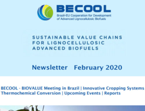BECOOL February 2020 Project Newsletter is out