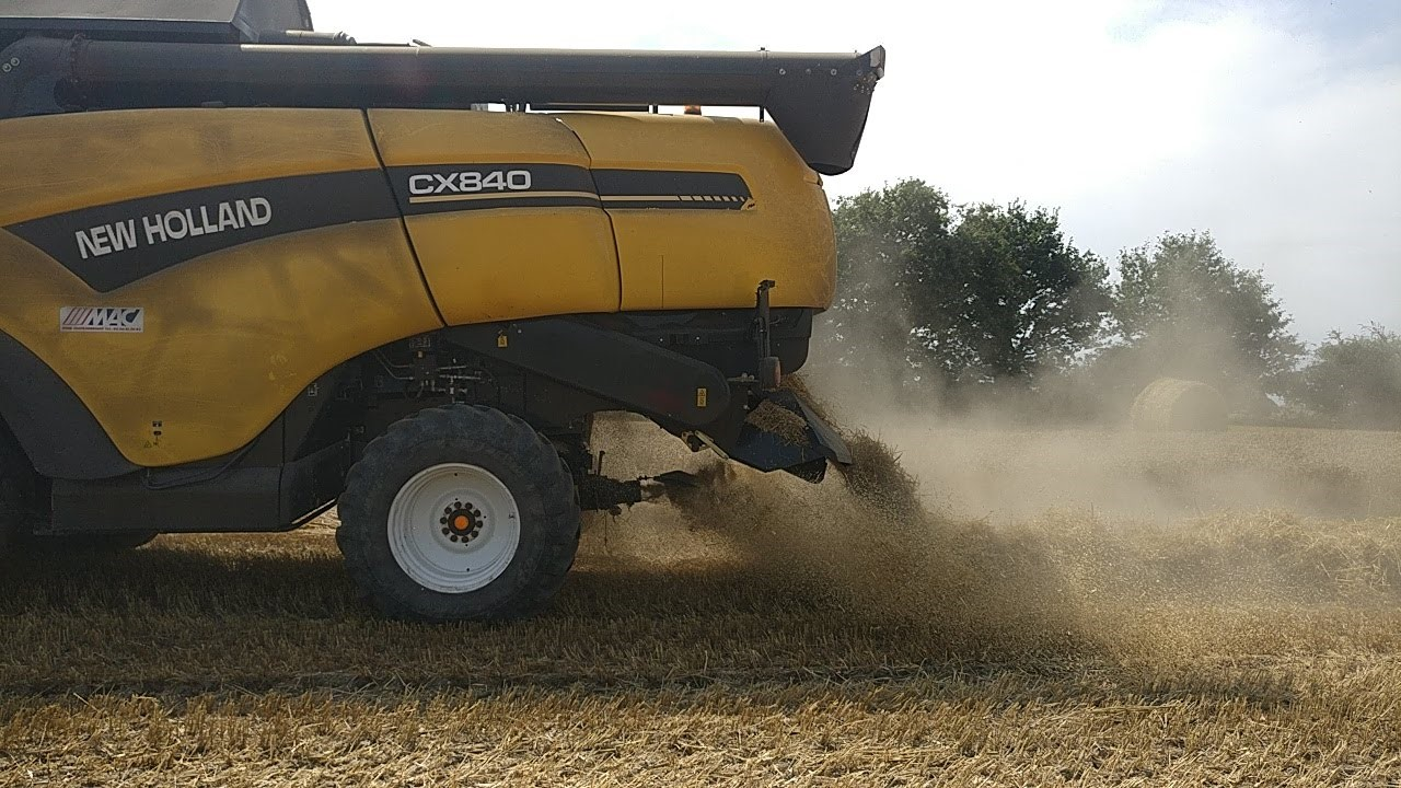 Recovering Chaff: Converting Untapped Biomass Resource into Valuable Feedstock