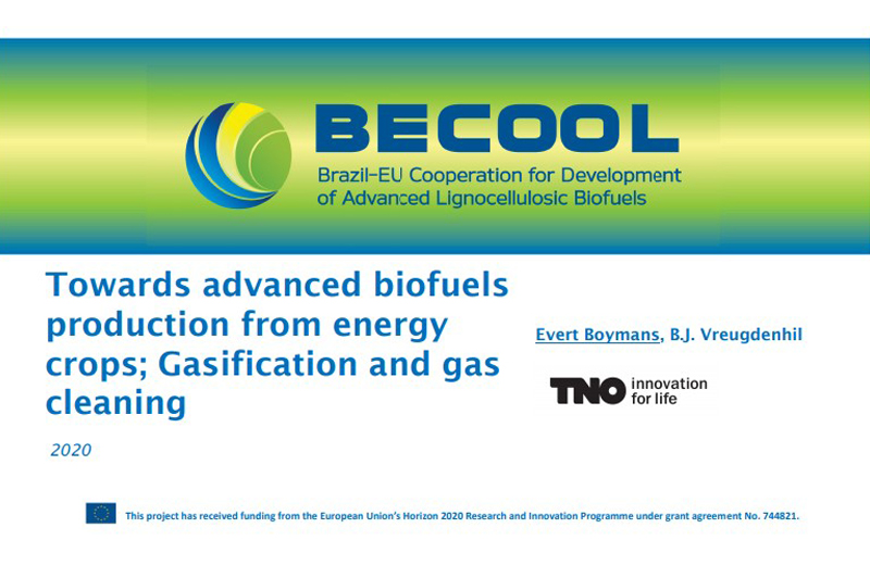 Towards advanced biofuels from energy crops – Gasification and gas cleaning