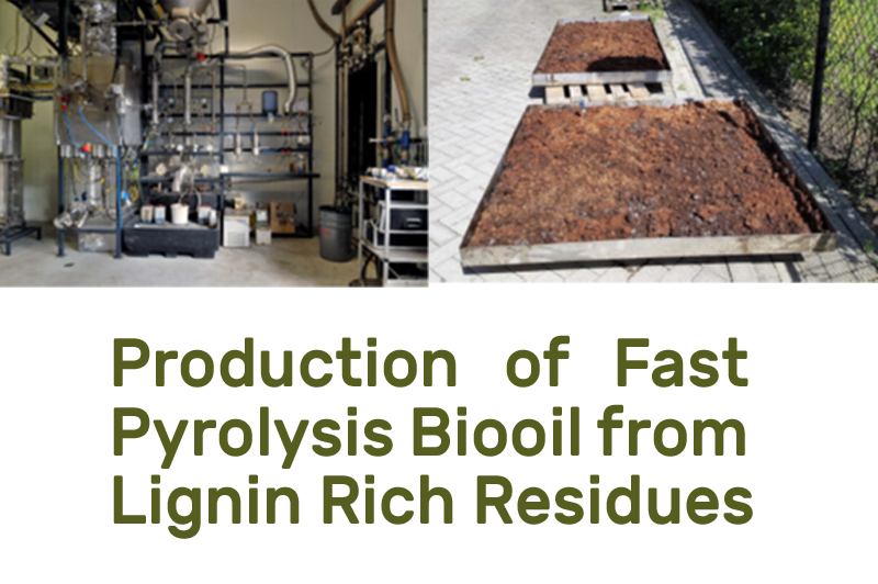 Production of Fast Pyrolysis Biooil from Lignin Rich Residues